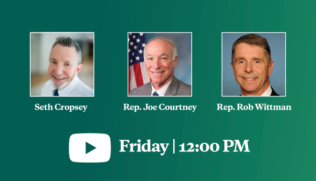 Virtual Event | The Future of U.S. Seapower: A View from Congress