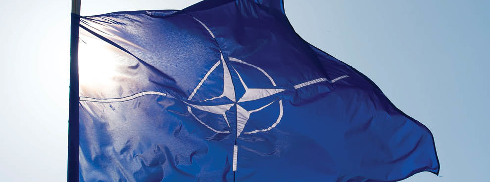 NATO and the New Decade: Assessing the Transatlantic Alliance